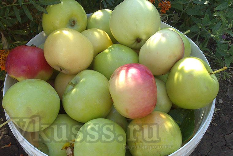 Отборные свежие яблоки